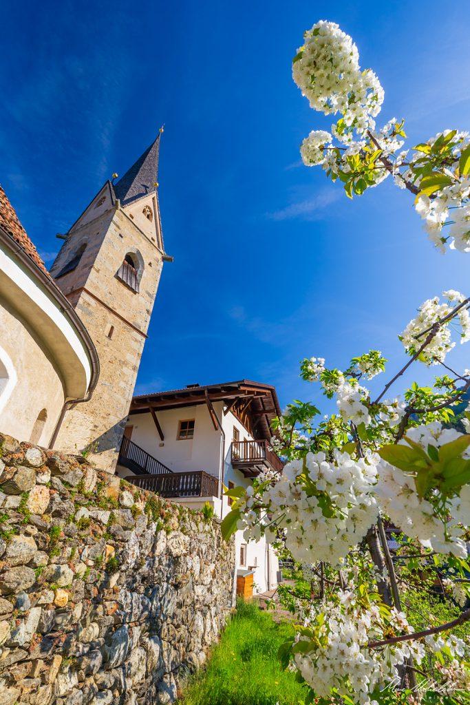 ID 41803158 - © Hohenleitner